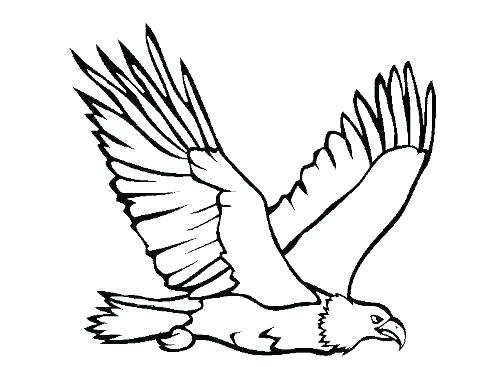 484x367 Bald Eagle Pictures To Color Eagle Drawing At Free For Personal