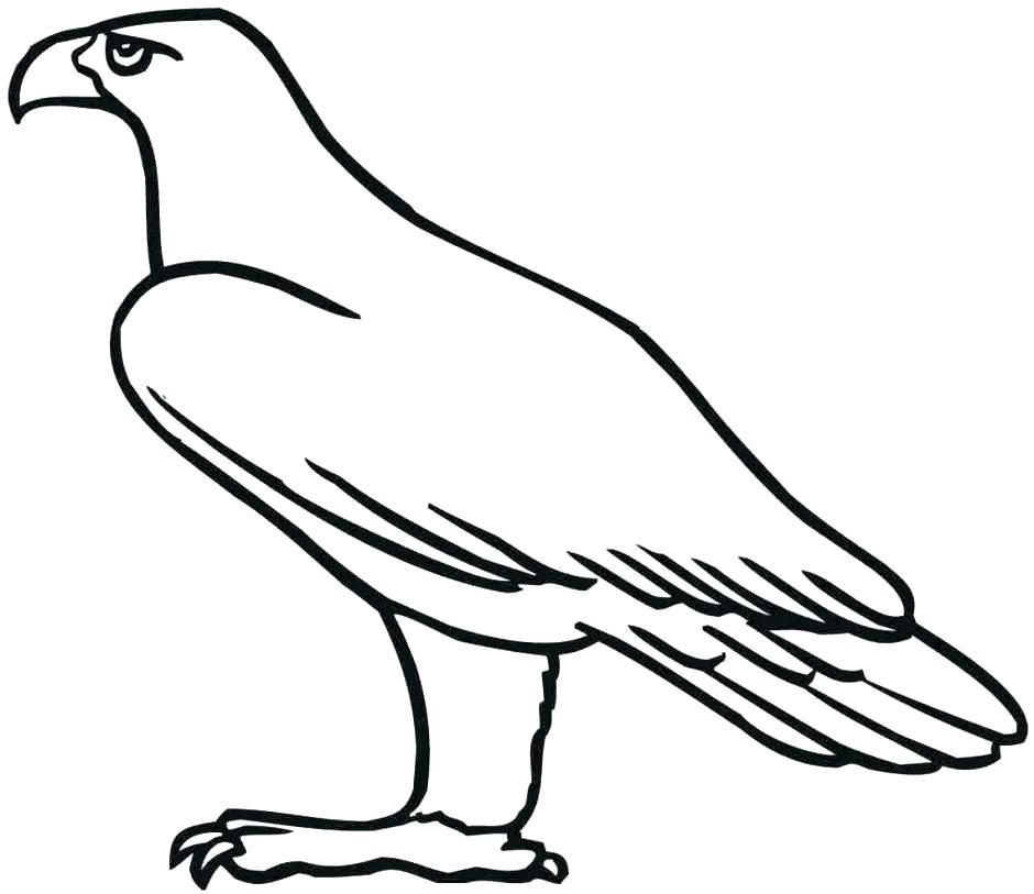 940x813 eagle template animal templates free premium templates bald eagle