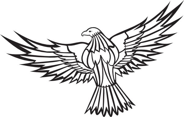 600x383 Drawing Eagles Abstract Transparent Png Clipart Free Download