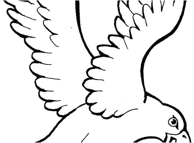 827x609 Eagle Coloring
