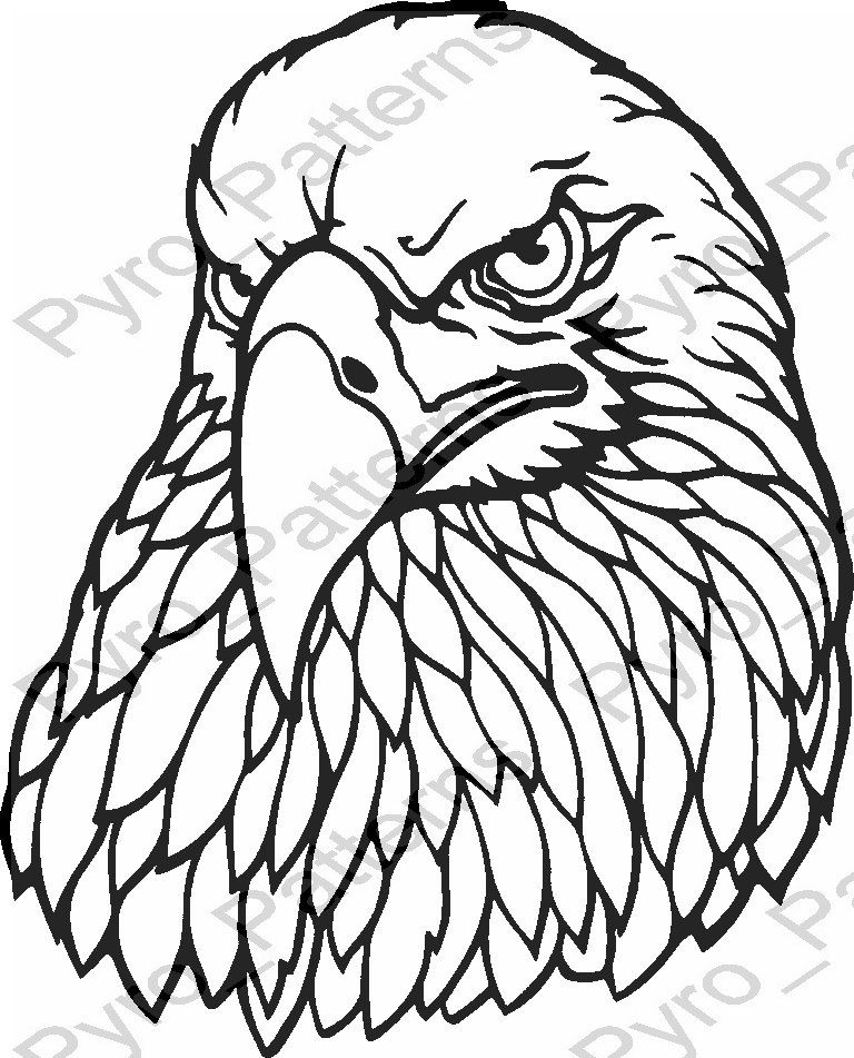 768x951 Eagle Head Bird Pyrography Wood Burning Pattern Printable Stencil