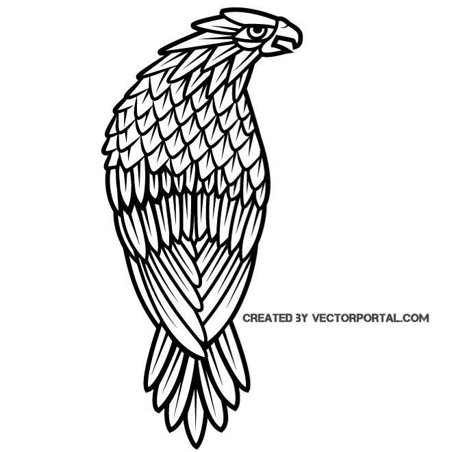 660x660 Falcon Clip Art