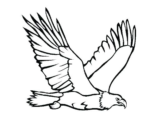 484x367 Golden Eagle Coloring