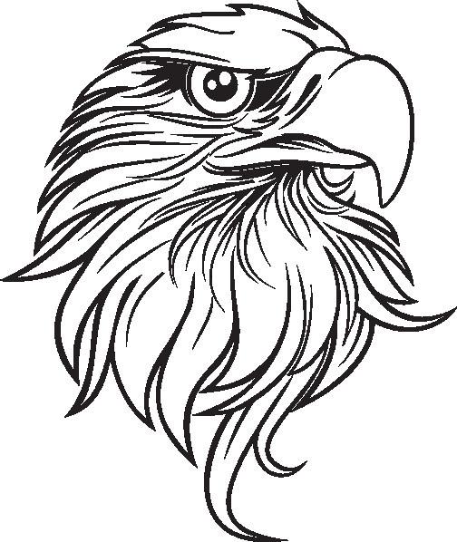 504x598 Lovely Eagle Head Clipart
