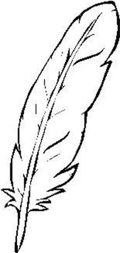 237x500 Beads Eagle Feather, Medicine Wheel