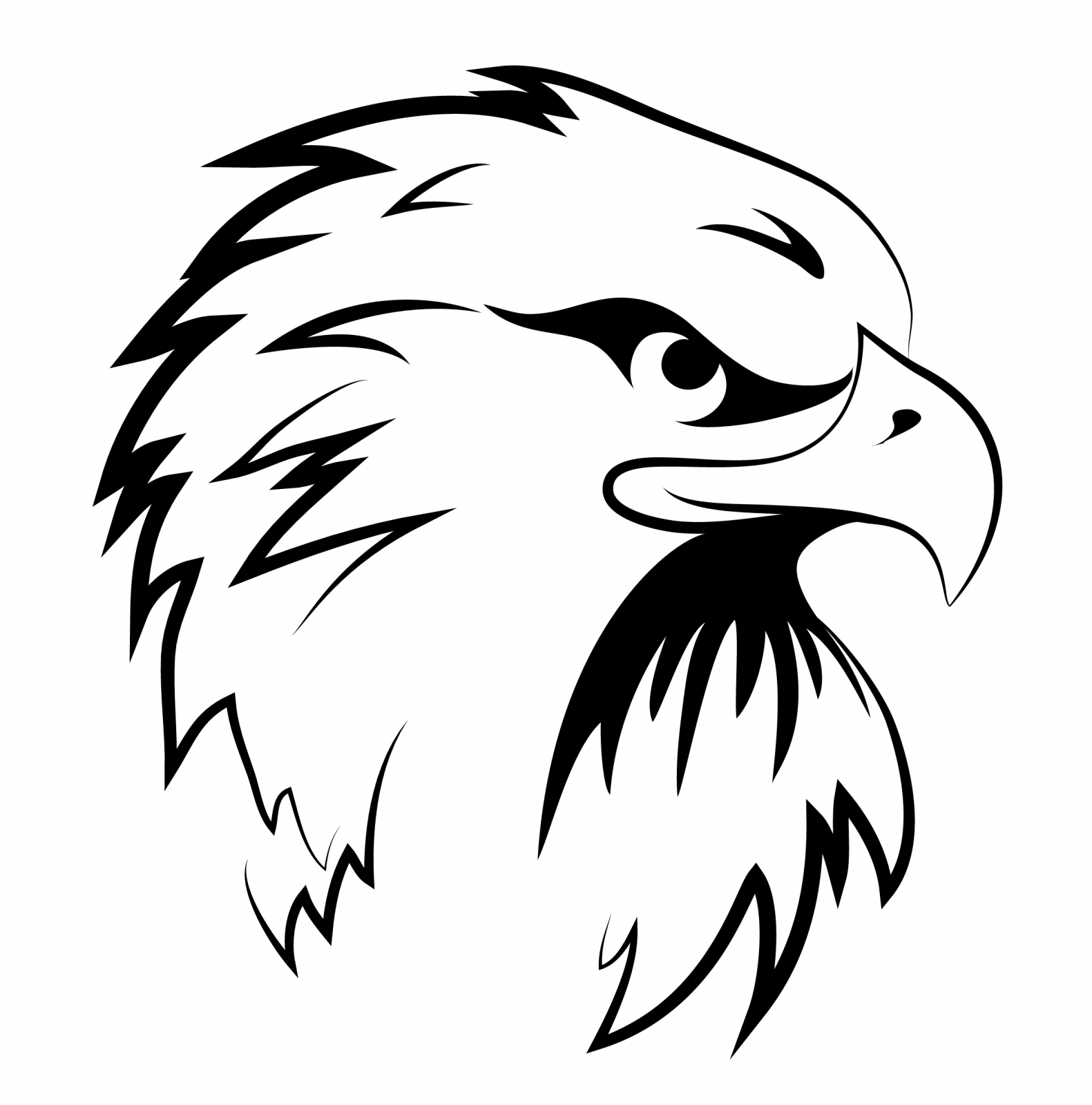 Eagle Head Line Drawing