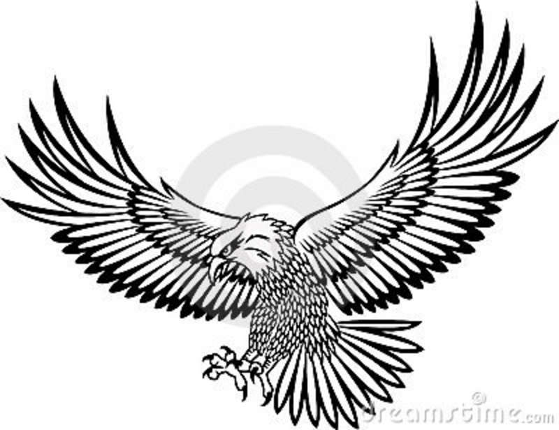 800x616 fly clipart, suggestions for fly clipart, download fly clipart