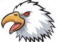 200x150 bald eagle clip art beautiful bald eagle line drawing