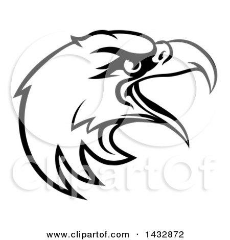 Eagle Mascot Drawing | Free download best Eagle Mascot