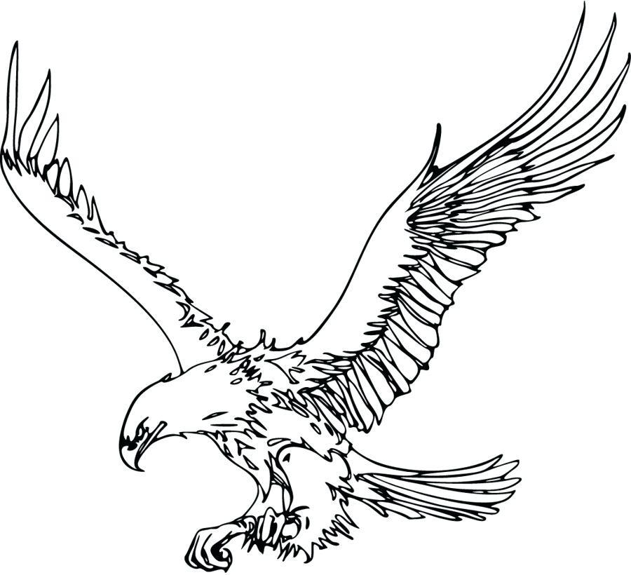 900x820 bald eagle outline drawn bald eagle outline x