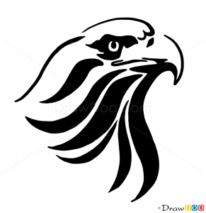 291x300 How To Draw Eagle, Tribal Tattoos