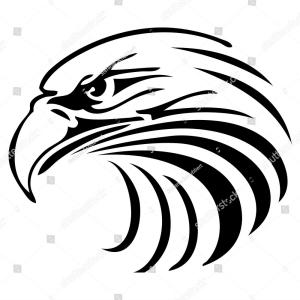300x300 Best Free Stock Vector Eagle Head Logo Drawing Soidergi
