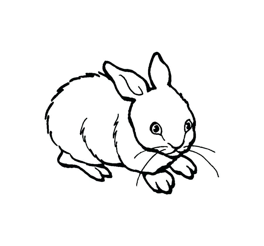 900x840 drawing a rabbit rabbit drawing google search line drawing rabbit