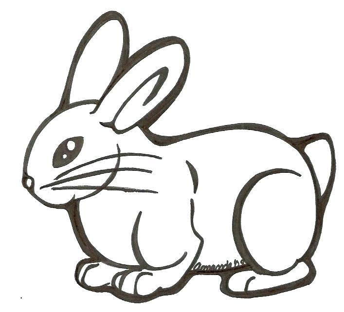 707x641 Easy Easter Bunny Drawing