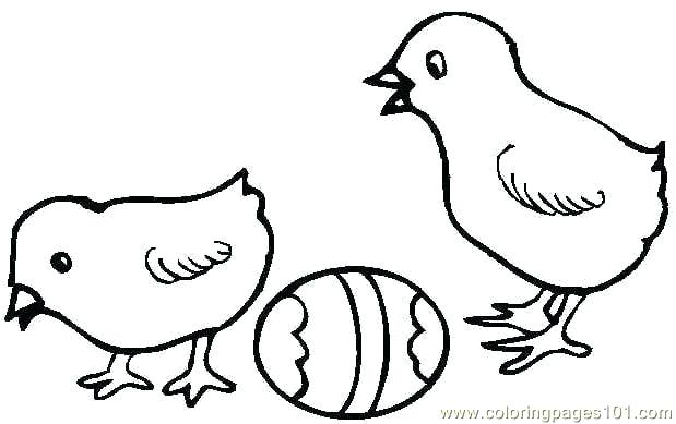 619x389 Easter Chick Coloring Pages Drawing At Free For Personal Use Hen