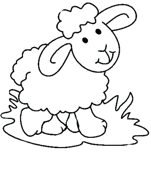 600x681 lamb color best free printable easter lamb coloring pages