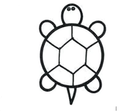 417x360 easy to draw reptiles how to draw a turtle step