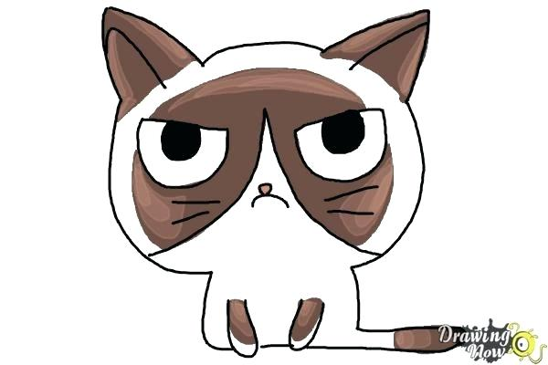 600x400 How To Draw A Cat Face Easy How To Draw A Cute Cat Face Easy