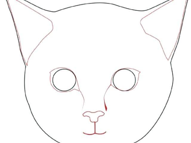 640x480 Cat Face Drawing