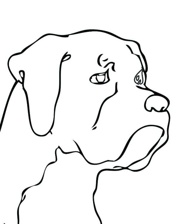 580x751 Easy To Draw Dog How To Draw A Easy Dog Drawing Pencil Easy