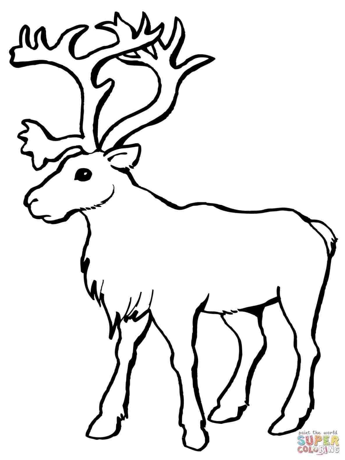 1185x1580 Huge Collection Of 'easy Drawing Of A Deer' Download More Than