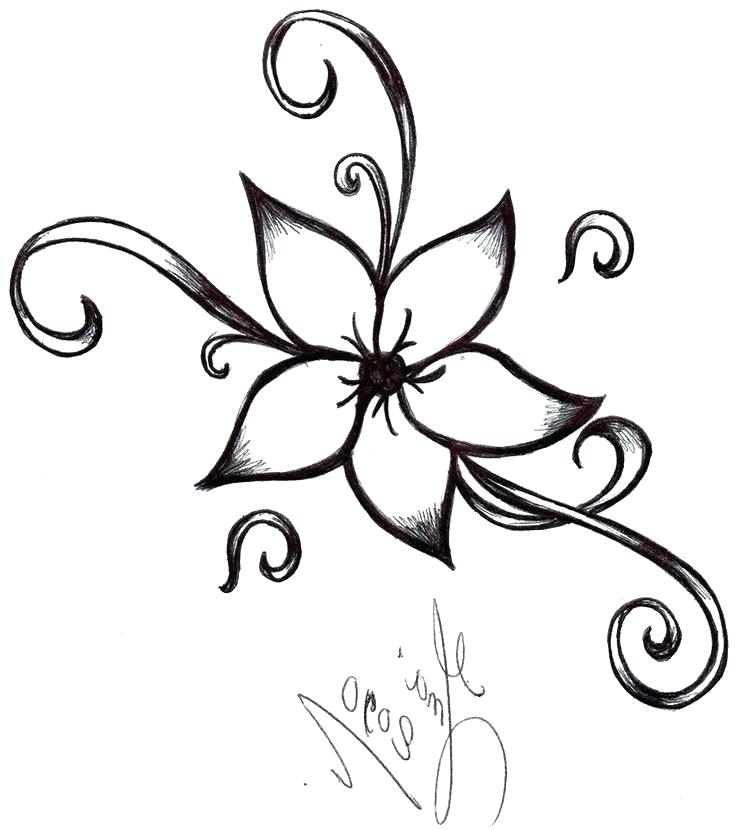 736x830 Easydrawing Easy Draw Flower Designs Can Easy Drawing Ideas