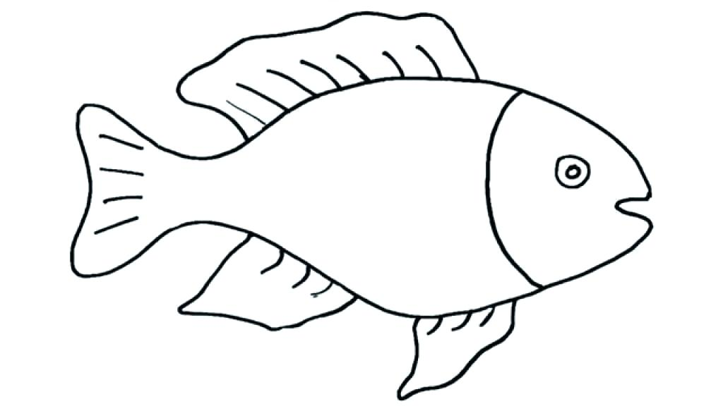 1024x576 Kids Drawing Easy Simple Fish Drawing How To Draw A Step