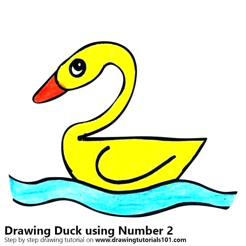 800x800 Duck Drawing For Kids Step