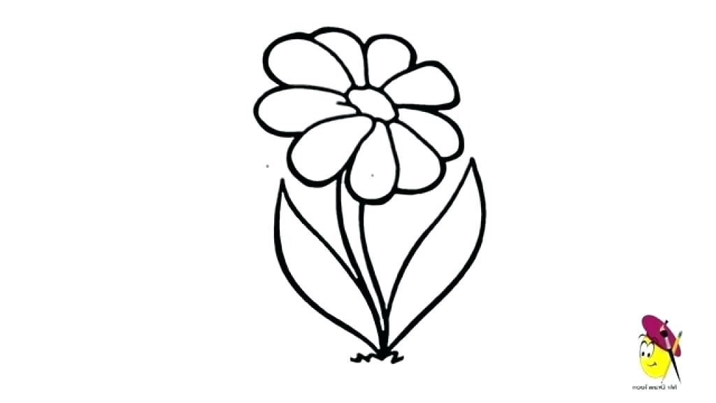 1024x576 How To Draw Simple Flower Flower Drawing How Flower Drawing How
