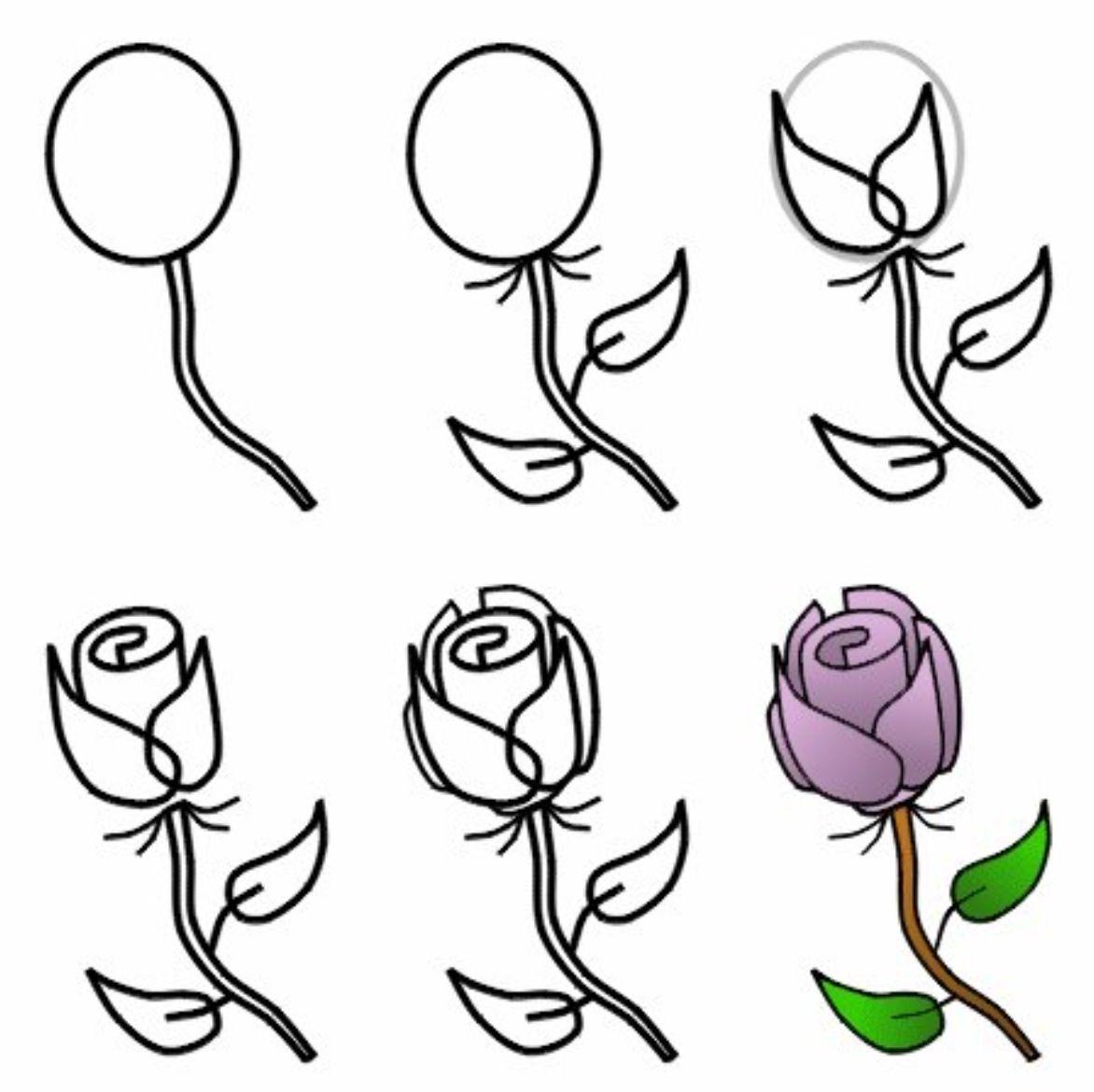 1172x1170 How To Draw A Flower How To Draw A Flower Step