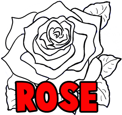 400x378 How To Draw Roses Opening In Full Bloom Step
