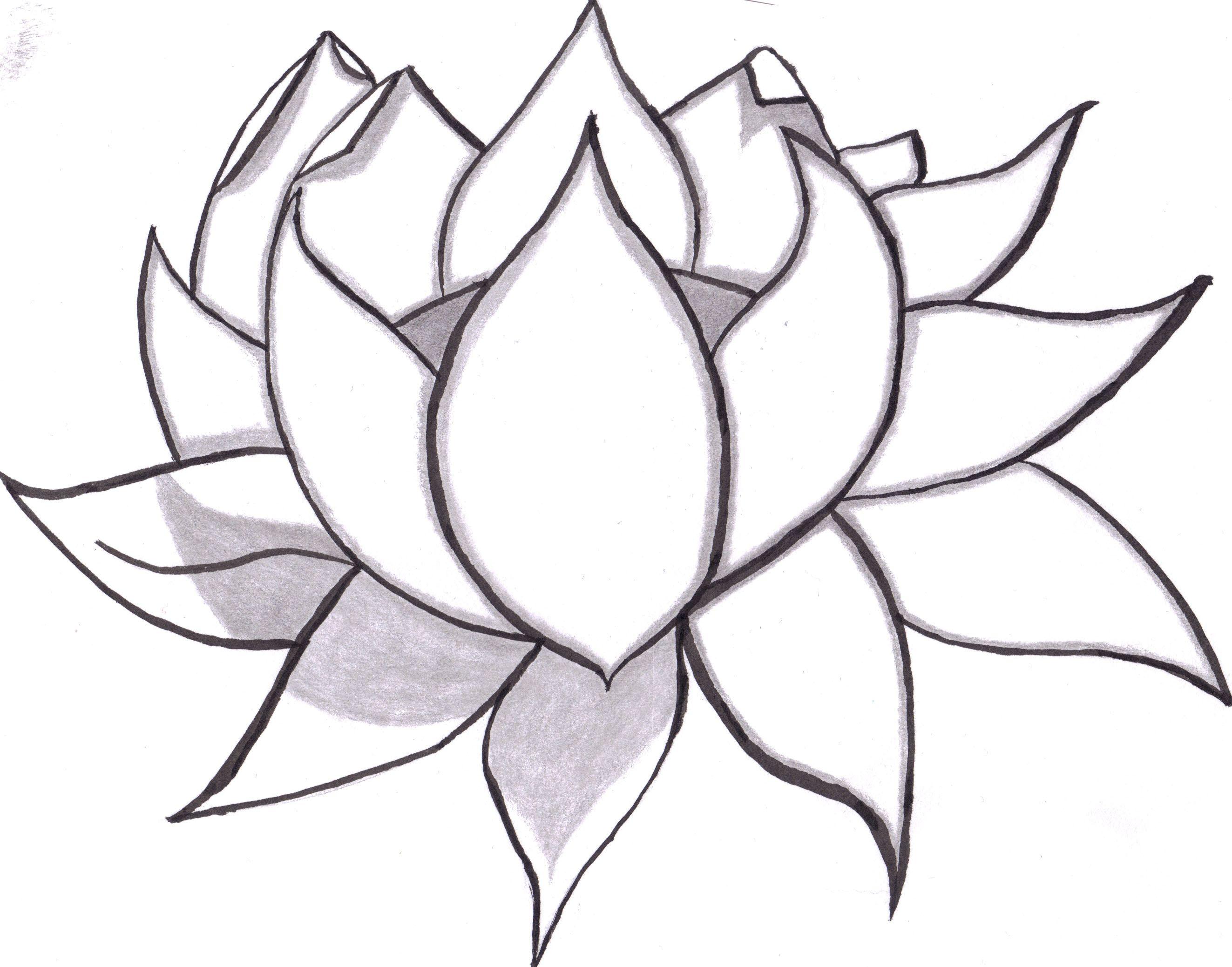2646x2077 Lotus Flower Outline Drawing Simple Flower Drawing Ideas Lotus