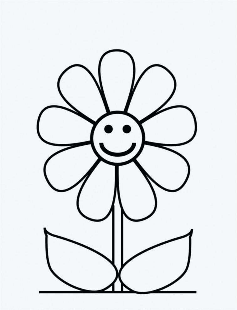 757x990 Simple And Easy Flower Sketches Simple Flower Drawing Easy