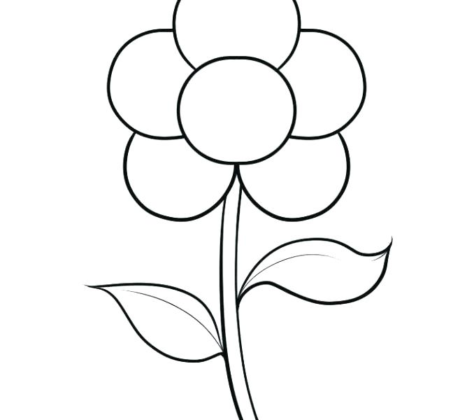 678x600 Easy Flower Drawing Tutorials