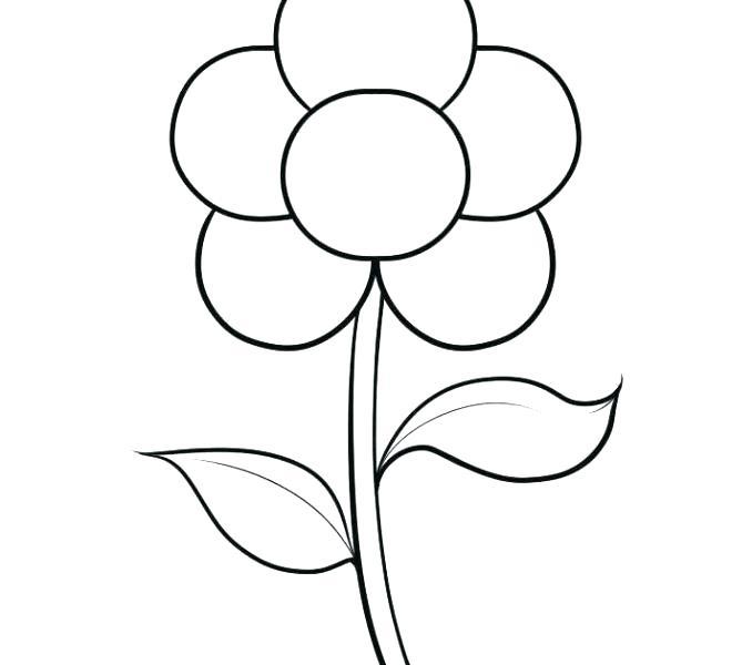 678x600 Easy Flower Drawing Tutorials