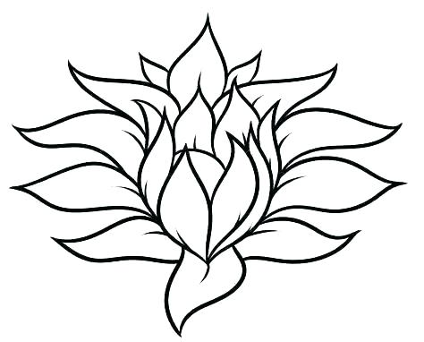 474x382 Simple Drawing Of A Flower