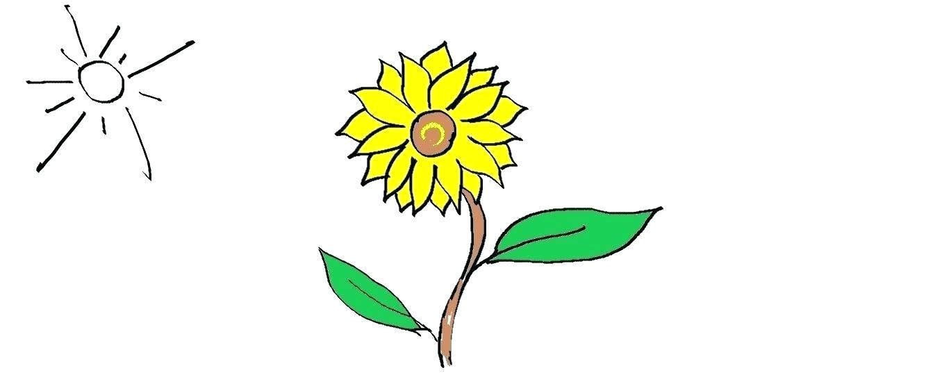 1359x540 Easy Cartoon Flower Drawings Image Titled Draw Flowers Step
