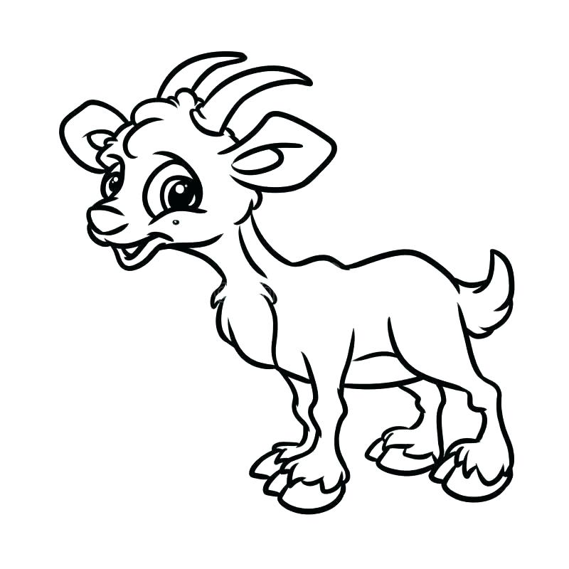 Easy Goat Drawing | Free download best Easy Goat Drawing on