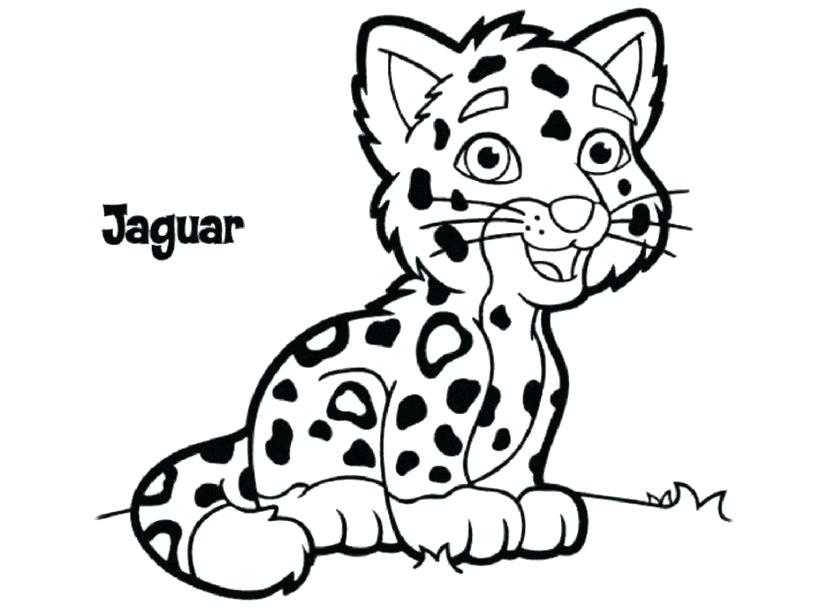 827x609 Coloring Pages Jaguar Coloring Pages Easy Black