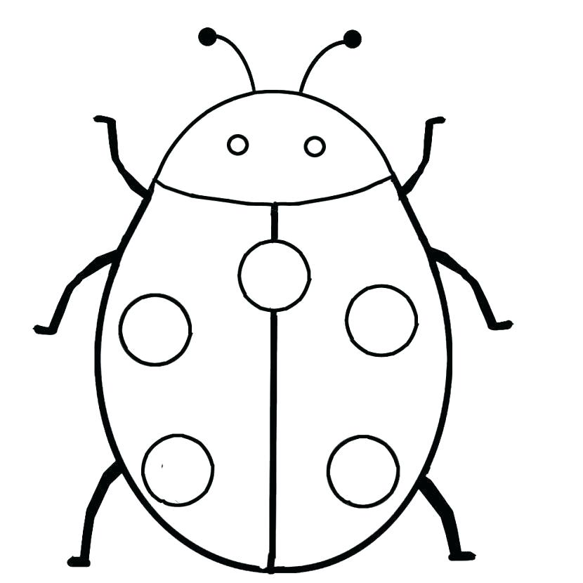 830x830 ladybug drawings day ladybug ladybug drawings easy