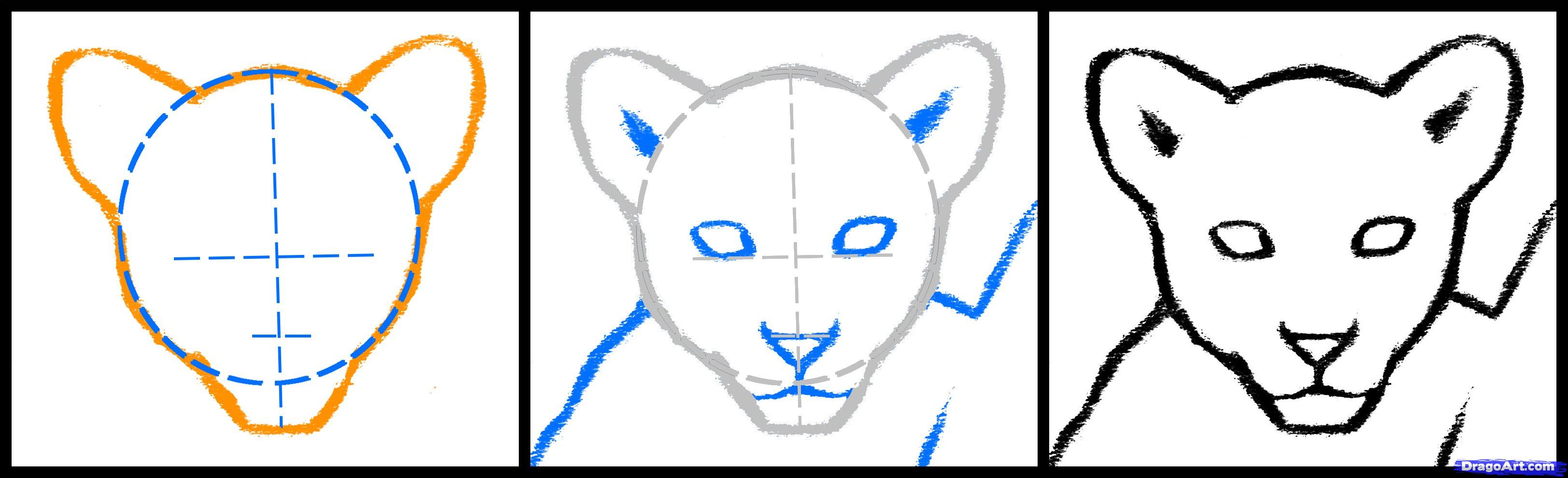 Easy Lion Drawing Steps | Free download best Easy Lion Drawing Steps