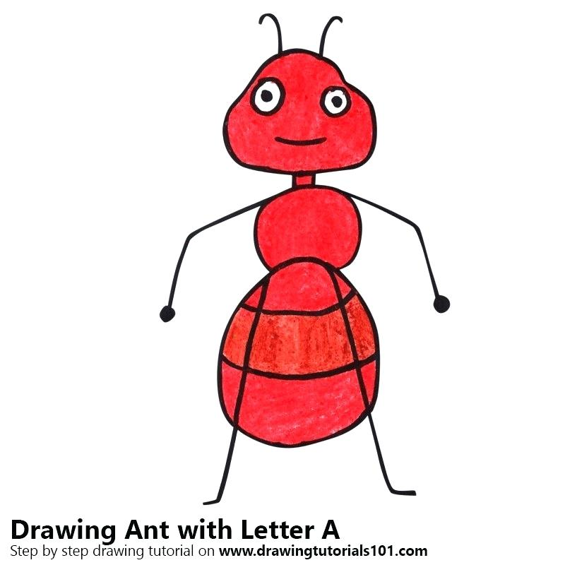 800x800 drawing of ant ant ant man drawing images