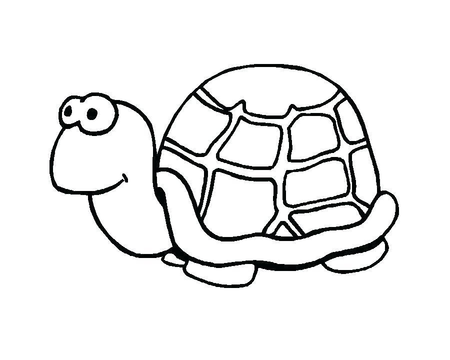 900x720 Drawings Of Turtles Teenage Mutant Ninja Turtles Drawings Sea