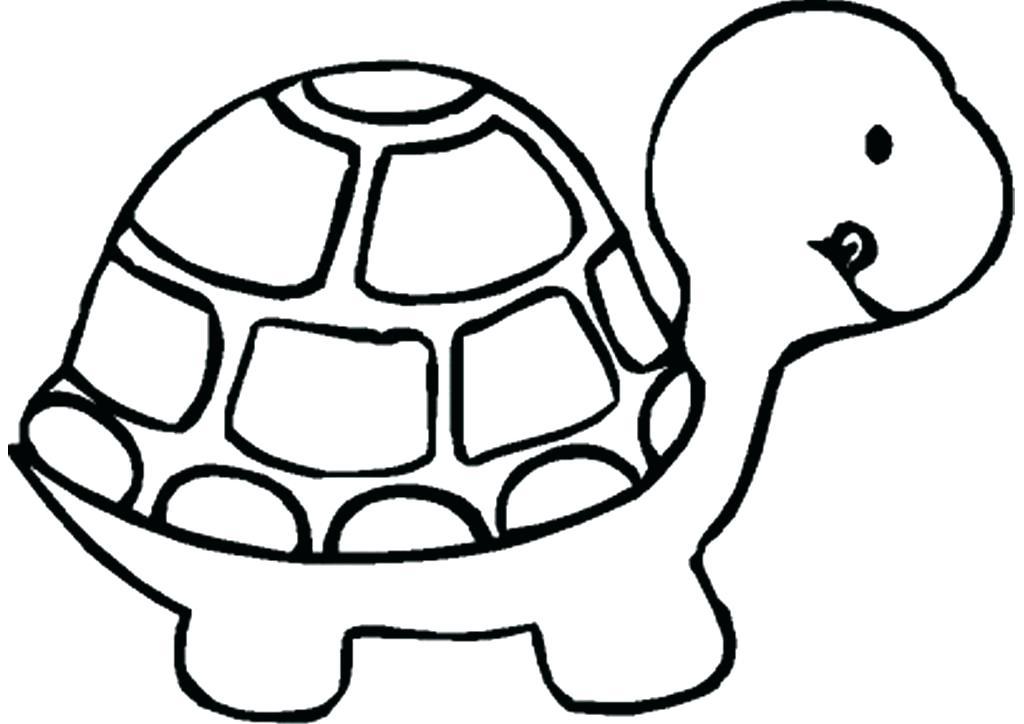 1024x724 turtle drawings turtle drawings turtle drawing