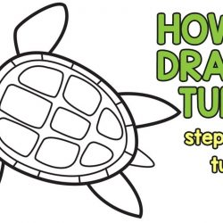 250x250 Easy Turtle Drawing Step