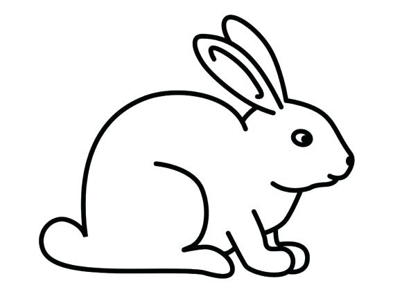 580x435 rabbit draw coloring pages draw a rabbit rabbit face drawing easy