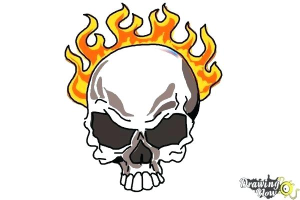 600x400 How To Draw A Skeleton Head Human Skull Easy To Draw Skeleton Head