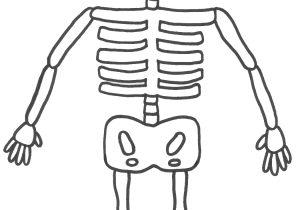 300x210 How To Draw A Skeleton Step