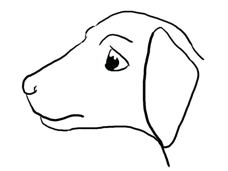800x600 Easy Drawings Of Dogs