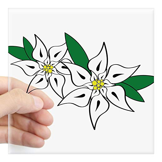 522x522 cafepress edelweiss square sticker x square